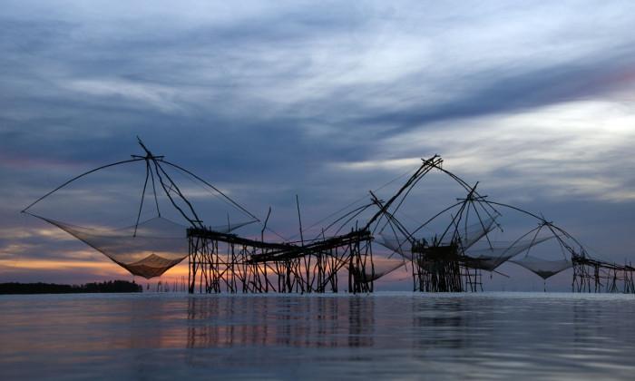 Tổ chức Sông ngòi Quốc tế phủ định ý nghĩa tham vấn thủy điện Don Sahong