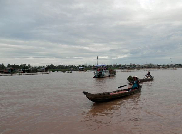 Dòng sông này bao đời nay là nguồn sống của hàng chục triệu người ĐBSCL (Ảnh: ThienNhien.Net)