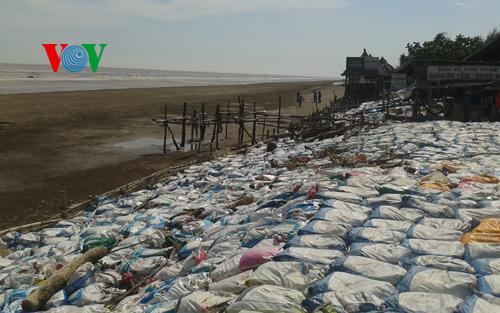 Người dân xã Thạnh Hải, huyện Thạnh Phú khắc phục sạt lở ven biển do triều cường (Ảnh: VOV Online)