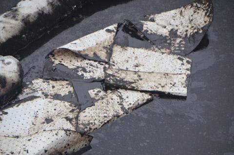 Dùng giấy thấm để xử lý dầu FO bị tràn. (Ảnh: Anh Tuấn)