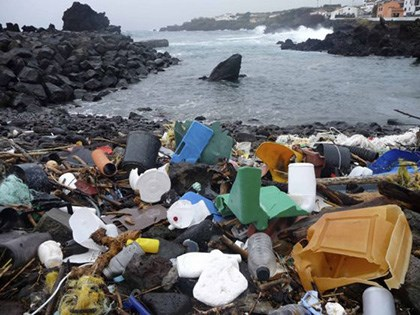 S.O.S: Con người đang tàn phá biển khủng khiếp