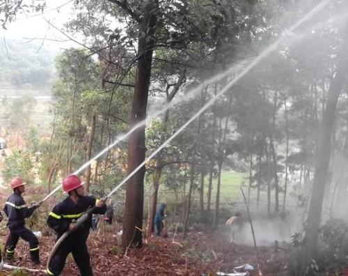 Diễn tập phòng cháy, chữa cháy rừng trên địa bàn thị xã Sơn Tây sáng 3/12/2014. (Ảnh: Kinh tế & Đô thị Điện tử)