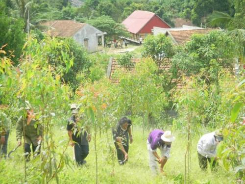 Người dân làng Hợp, huyện K'Bang, Gia Lai, trồng rừng trên vùng đất trống đồi trọc. (Ảnh: Văn Thông/TTXVN)