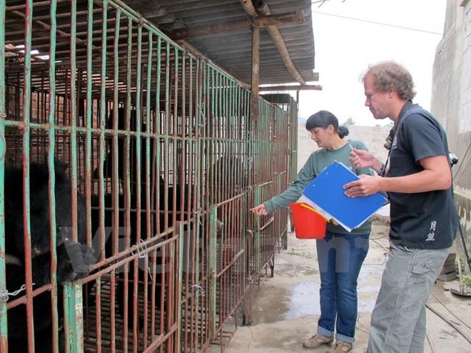 Gấu nuôi tại các trang trại tư nhân ở Quảng Ninh đang kêu cứu