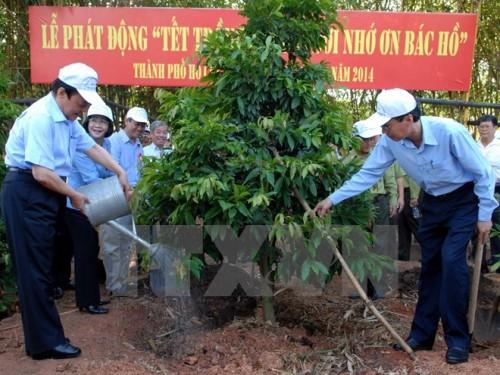 Hưởng ứng Tết trồng cây. (Ảnh minh họa: TTXVN)