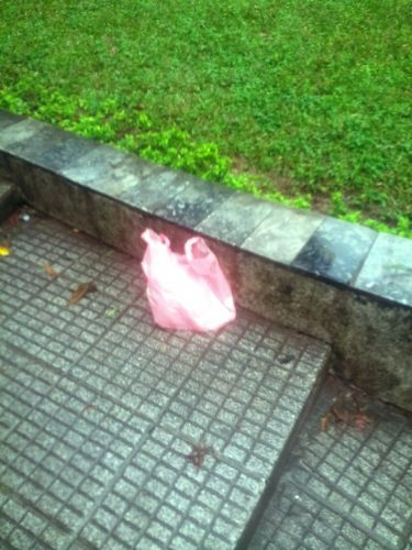 Tuy nhiên, vẫn còn một số người dân thiếu ý thức xả rác ra ven hồ Hoàn Kiếm. (Ảnh: Nguyễn Hưởng)