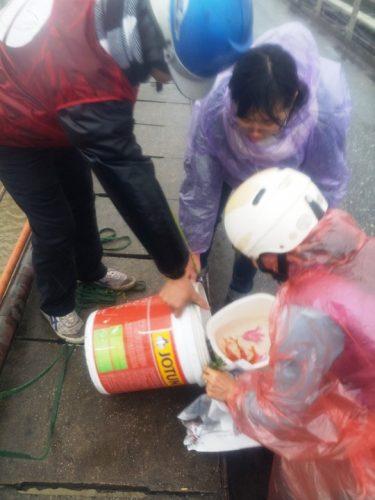 Người dân đang được các bạn tình nguyện viên giúp đỡ thả cá. (Ảnh: Nguyễn Hưởng)