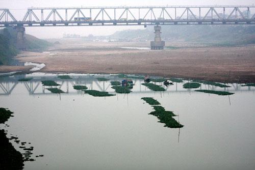 Bảo đảm nguồn nước phục vụ sản xuất vùng hạ du sông Hồng: Vẫn là bài toán khó