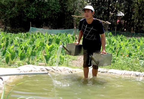 Trà Vinh: Nguồn nước ngầm sụt giảm nghiêm trọng