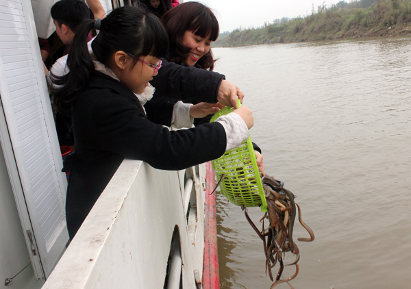 Tận hưởng cảm giác tự tay thả cá về môi trường thiên nhiên