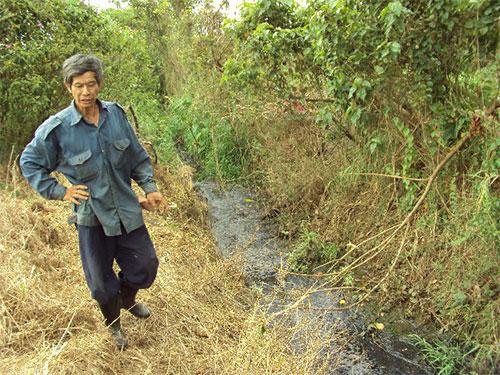 Sông Đồng Nai kêu cứu: Mối họa nguồn nước