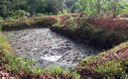 Nước thải từ chế biến mủ cao su. (Ảnh minh họa: dantri.vn)