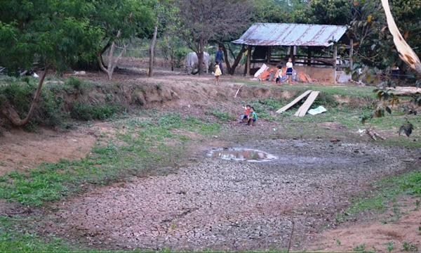Gia Lai: Quay quắt tìm nước sinh hoạt vì khô hạn