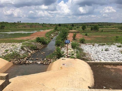 Đường dành cho cá đẻ vượt đập thành mương nước cho bò. (Ảnh: nongnghiep.vn)