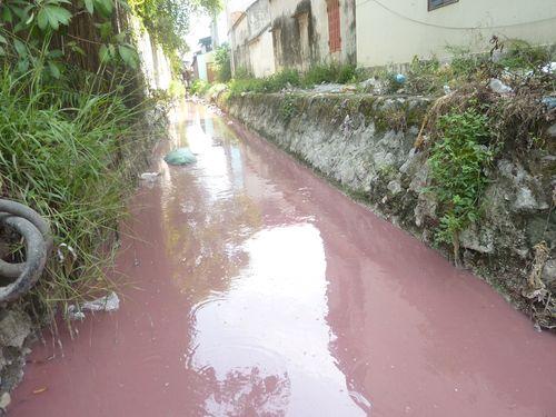Nguồn nước tại cụm công nghiệp làng nghề Phong Khê (thành phố Bắc Ninh, tỉnh Bắc Ninh) bị ô nhiễm nghiêm trọng. (Ảnh: Dương Văn Thọ/PanNature)