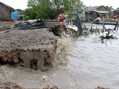 Tác động của biến đổi khí hậu và nước biển dâng ảnh hưởng rõ nét lên đời sống của người dân. (Ảnh: Huỳnh Thế Anh/TTXVN)