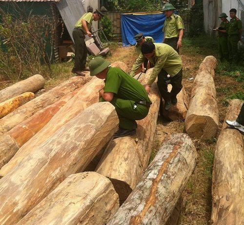 """Hơn 8 mét khối gỗ lậu """"vô chủ"""" tập kết trên bãi đất trống"""