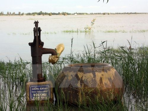 Nước sinh hoạt bị nhiễm phèn, mặn. (Ảnh: Lê Sen/TTXVN)