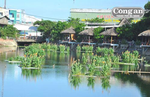 Nhiều bè hoa chuối được kết lại để tăng lượng ô xi trong nước và tạo cảnh quan trên hồ 2ha (P. Thanh Khê Tây). (Ảnh: Công an TP Đà Nẵng)