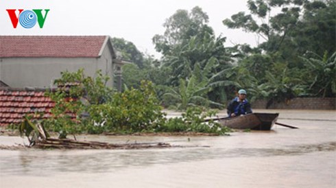 Việt Nam là một trong số những quốc gia bị ảnh hưởng nặng nề trước tác động của biến đổi khí hậu trên toàn cầu