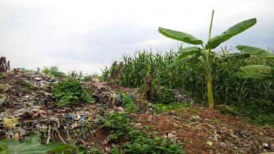 Sớm xử lý ô nhiễm rác tại Cao Bằng
