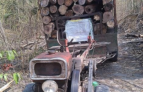 Xử lý trách nhiệm cá nhân để mất rừng