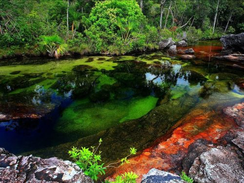 Sông cầu vồng ở Công viên quốc gia Serrania de la Macarenia được hình thành từ những loài cây dưới nước giúp nước có màu đỏ, xanh dương, vàng và xanh lá trong điều kiện đặc biệt. (Nguồn: BBC Travel)