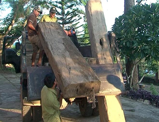 """Quảng Trị: """"Lâm tặc"""" đặt hàng chục bẫy chông ngăn kiểm lâm tịch thu gỗ lậu"""