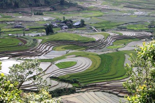 Thiếu nước đe dọa ngành nông nghiệp toàn cầu (Ảnh: PanNature)
