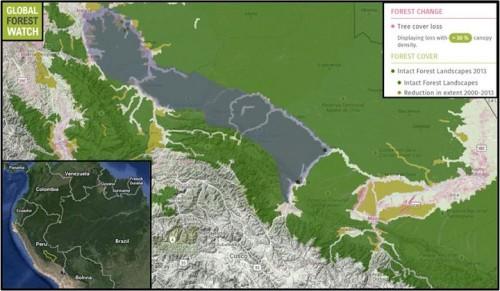 Phần mềm Giám sát rừng toàn cầu chỉ ra suy thoái rừng xảy ra ở một số nơi kể từ năm 2000 và hoạt động khai khoáng gia tăng gần đây ảnh hưởng tới môi trường sống của loài khỉ titi (ảnh chụp bản đồ)