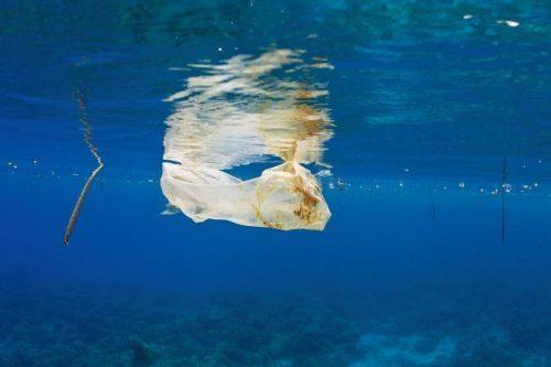 Túi nilon trôi dưới biển Philipines. Nilon còn được tìm thấy sâu dưới đáy biển và trong lớp băng Bắc Cực (Nguồn: National Graphic)