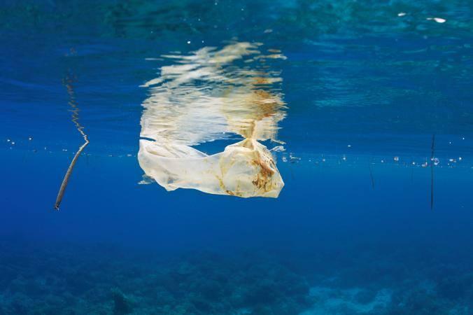 Đại dương hứng chịu 8 triệu tấn rác thải nhựa mỗi năm