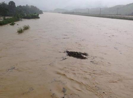 Mưa lớn khiến các sông tại Hà Tĩnh dâng cao