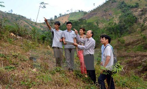 Tuyên Quang giao hơn 1.880ha rừng cho các hộ dân và địa phương