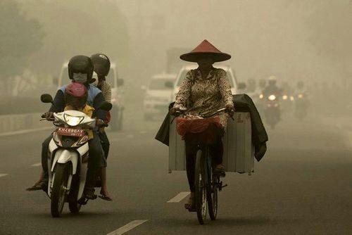 Đường phố Palangkaraya ở Indonesia chìm trong khói mù (Nguồn: Reuters)