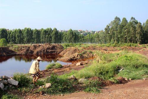 Đất bị suy thoái (Ảnh: Hoàng Văn Chiên/PanNature)