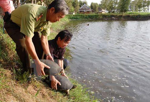Thả các động vật hoang dã về Vườn quốc gia U Minh Thượng (Ảnh: Đình Huệ/TTXVN.)