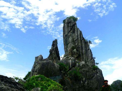 Cần thành lập khu bảo tồn núi đá vôi Hòn Chông – Kiên Lương trước khi quá muộn