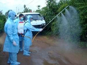 Tăng trách nhiệm người đứng đầu trong phòng chống sốt xuất huyết