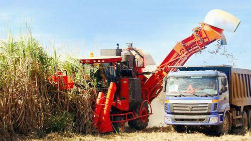 Doanh nghiệp Việt ra nước ngoài khai khoáng và làm nông nghiệp
