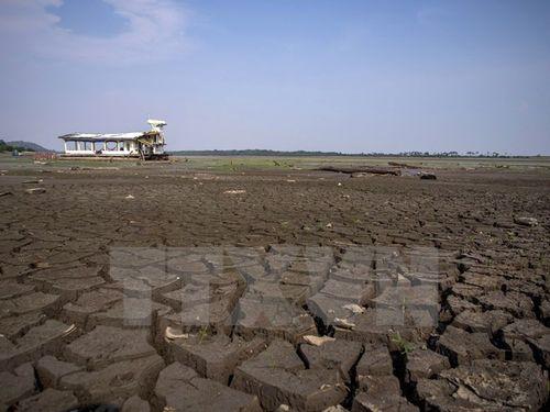 33% diện tích đất trên toàn cầu bị xuống cấp trầm trọng