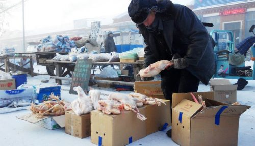 Người dân buôn bán tại một khu chợ trong khi nhiệt độ thấp nhất là -42 độ C.