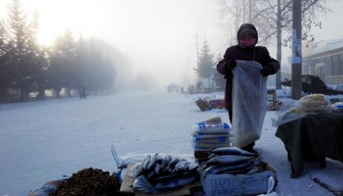 Người bán cá đông lạnh trong tuyết.