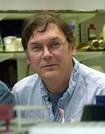 Tim Hunt sẽ không còn được coi là giáo sư danh dự của trường Đại học London.