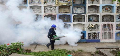 Brazil dùng muỗi biến đổi gen để chặn virus Zika - ThienNhien.Net | Con  người và Thiên nhiên