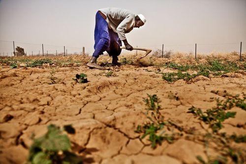 Tài nguyên đất dành cho canh tác nông nghiệp ngày càng cạn kiệt. (Ảnh minh họa: The Nation)