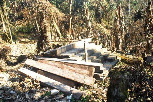 """Lập đoàn liên ngành, kiểm tra thông tin rừng Sa Mu bị """"xẻ thịt"""""""