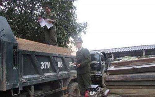 Cơ quan chức năng đang lập biên bản bắt quả tang 2 xe tải chở gỗ Sa Mu, Pơ Mu trái phép trên QL7, thuộc huyện Con Cuông.