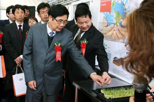 Bộ trưởng Bộ NN&PTNT Cao Đức Phát thăm mô hình trồng cà chua bằng công nghệ IMEC (Ảnh: VGP/Thành Chung)