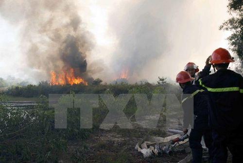 Cháy rừng tái sinh tại Hà Nam, gây thiệt hại trên một ha rừng